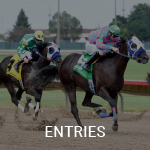 View the Entries Calendar on Equibase