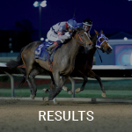 See the Summary Results Calendar on Equibase