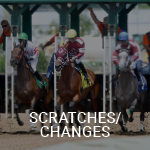 See Scratches & Changes on Equibase