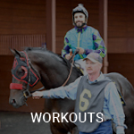 View the workouts calendar on Equibase
